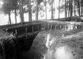 Schanze im Wald - CH-BAR - 3241753.tif