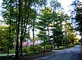 Scotts Woods HD Milton MA.jpg