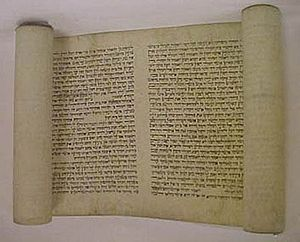 Biblical canon - A scroll of the Book of Esther; one of the five ''megillot'' of the Tanakh.