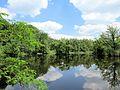 See in der Ohligser Heide.jpg