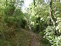 Sentiers près de Broue - panoramio.jpg