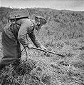 Serie Landmijnen ruimen in Hoek van Holland, Bestanddeelnr 900-6463.jpg