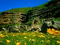 Shahdag, Qusar region, Azerbaijan. 2016-05-26 26.jpg