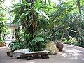Singapore Zoo 8.JPG