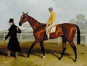 Sir Tatton Sykes -  Sir Tatton Sykes is led in by his human namesake after the 1846 St Leger