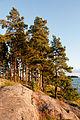 Skargard utanfor Helsingfors Finlan (2).jpg