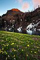 Sky High Lakes, Klamath NF, Calif.jpg