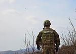 Slovenia live close air support March 12, 2015 150312-A-DZ412-009.jpg