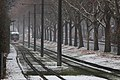 Snowing and tram.jpg