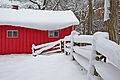 Snowy red house and fence.jpg