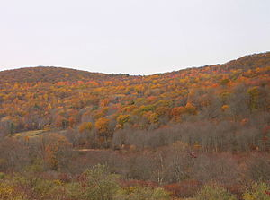 Lake Township, Luzerne County, Pennsylvania - Sorber Mountain in Lake Township