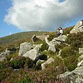 South Spur Mt Leinster - geograph.org.uk - 388840.jpg