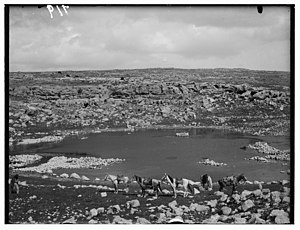 Library of Congress photograph of Carmel circa 1900 to 1926, showing run-off from natural spring