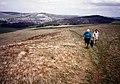 Southern Upland Way, looking towards Galashiels - geograph.org.uk - 65123.jpg