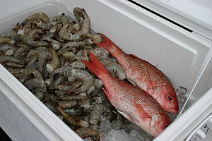 NC Fish & shrimp from Southport Seafood at Sou...