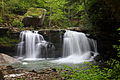 Spring-mill-creek-waterfall - West Virginia - ForestWander.jpg
