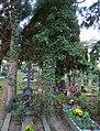 Střešovický hřbitov - nejstarší náhrobní kříže.jpg