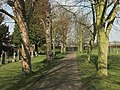 St Wilfred's Churchyard, looking towards the road - geograph.org.uk - 376949.jpg