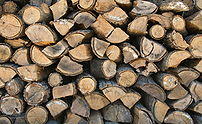 Firewood, stacked to dry
