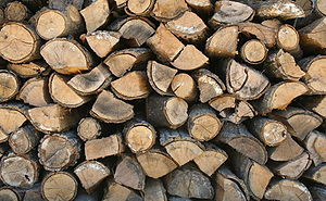 Logs for use as firewood, stacked to dry.