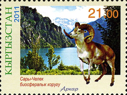 Urial on a Kyrgyzstan stamp Stamps of Kyrgyzstan, 2011-05.jpg