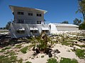 Starr-150326-0897-Cycas circinalis-Old barracks BEQ C and Gym-Town Sand Island-Midway Atoll (25173958131).jpg