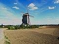 Steenvoorde Moulin le Noordmeulen.jpg