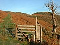 Stile Drove Road Sourfoot Fell - geograph.org.uk - 81044.jpg