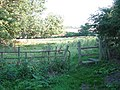 Stile into cattle pasture - geograph.org.uk - 1422659.jpg