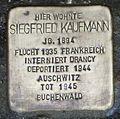 Stolperstein Siegfried Kaufmann Kehl.jpg