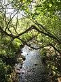 Stream near Hugos Farm - geograph.org.uk - 799813.jpg
