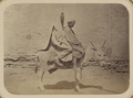 Street Types of Central Asian Cities. A Woman and Boy Astride a Horse WDL11121.png