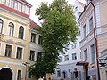 Street in Tallinn 6.JPG