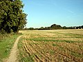 Stubble at Oughtonhead - geograph.org.uk - 245106.jpg