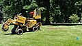 Stump removal - Lake View Cemetery (41942545715).jpg