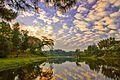 Sunrise di danau lido.jpg