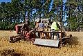 Sunshine KT 1938. Harvesting wheat. (10616558476).jpg