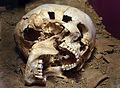 Tête coupée du Quéroy (Age du bronze moyen).JPG