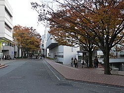 芸術 大学 大阪