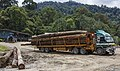 Tawau-District Sabah Logging-Camp-08.jpg