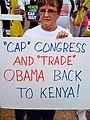 Tea-party-racist-signs-04-back-to-kenya2.jpg