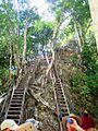 Tempel4 Aufstieg Tikal.jpg