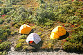 Tent Camp (9511194249).jpg