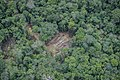 Terra Indígena Pirititi, Roraima (27590208487).jpg