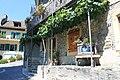Terrasses de Lavaux - panoramio (8).jpg