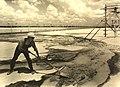 Texas Gulf Sulphur Company (10428906725).jpg