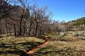 The 13 mile return trail, Kolob Canyons, Walk to the Kolob Arch (Zion National Park) (3439272303).jpg