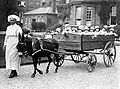 The 18-seater pram, Park Royal Hospital, London, 1925 Wellcome L0002193.jpg