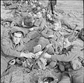 The British Army in North-west Europe 1944-45 B11290.jpg