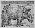 The Rhinoceros MET MM2134.jpg